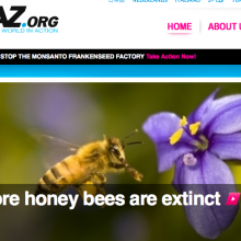 Recommended Website: Avaaz.org