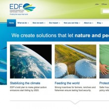 Featured Ally Website: Environmental Defense Fund