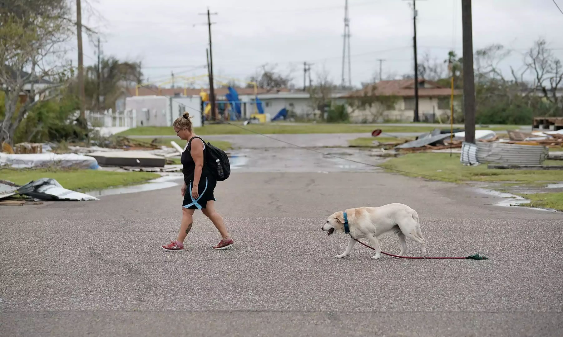 How do cities rebuild after hurricanes like Harvey and Irma?