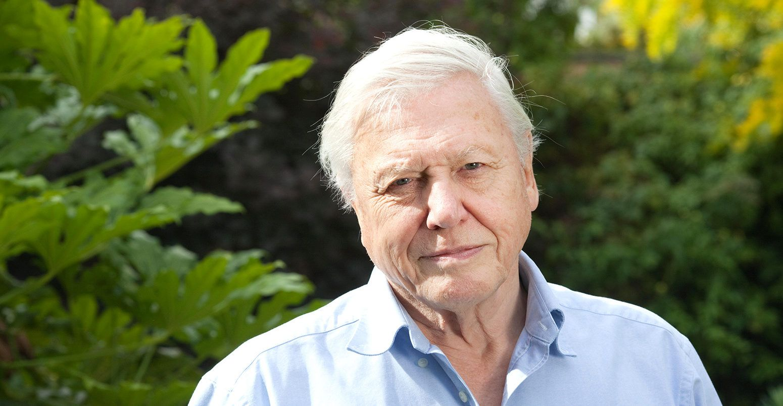 DAVID ATTENBOROUGH WARNS OF 'APPALLING FUTURE,' TELLING DAVOS 'THE GARDEN OF EDEN IS NO MORE'